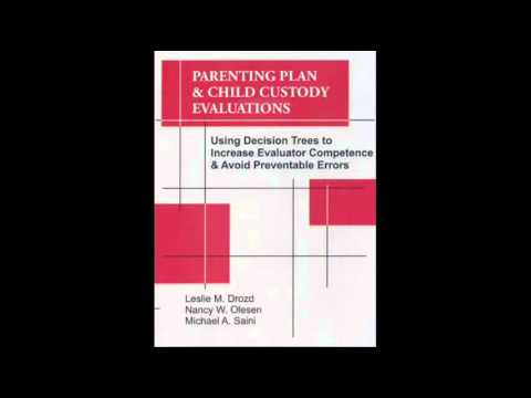 Parenting-Plan-Child-Custody-Evaluations-Using-Decision-Trees-to-Increase-Evaluator-Competence-Avo-20