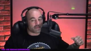 Spanking-Parenting-with-Stefan-Molyneux-from-Joe-Rogan-Experience-436
